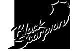 Black Scorpion - установочный центр